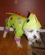 Dino Dog Homemade Costume