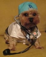Doctor Dog Homemade Costume