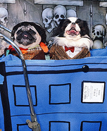 Homemade Doctor Who Costumes for Dogs