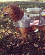 Dog Astronaut Homemade Costume