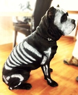 Dog Bones Homemade Costume