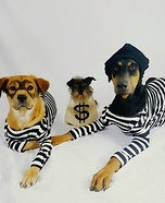 Dog Burglars Homemade Costume