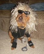 Dog the Bounty Hunter Dog's Costume