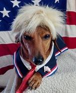 Donald Trump Dog's Halloween Costume
