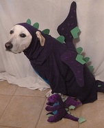 Homemade Doggie Dragon Costume