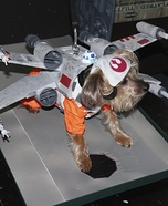 Doggie X-Wing Fighter Homemade Costume