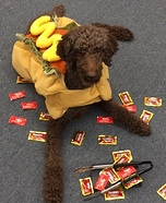 Dog's Delight Costume