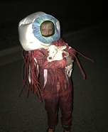 Dog's Eyeball Homemade Costume