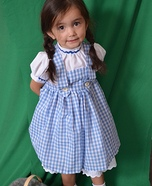 Dorothy from Wizard of Oz Homemade Costume