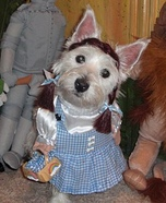 Dorothy Gale Dog Costume