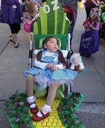 Dorothy's Wizard of Oz Costume
