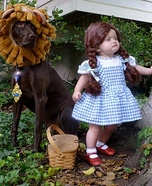 Dorthy & The Lion Costume