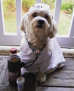 Dr. Pepper Homemade Costume