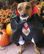Drac-u-dog and Boo Dogs Costumes