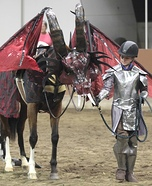 Dragon and Knight Homemade Costume