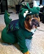 Homemade Dragon Costume