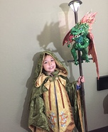 Dragon Master Wizard Homemade Costume