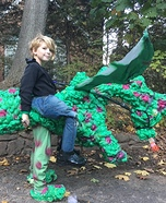 Dragon Rider Homemade Costume