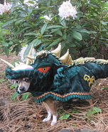 Homemade Dragon Tail Costume