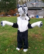 Dragon Wolf Homemade Costume