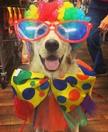 Duke the Clown Costume