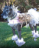 Earth Angel Mattie Costume for dog