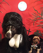 Elvira, Mistress of the Bark & Count Pupula Homemade Costume