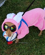 Energizer Bunny Dog Homemade Costume