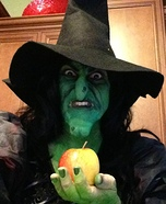 Evil Witch Homemade Costume