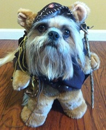 Creative costume ideas for dogs: Ewok Dogs Costume