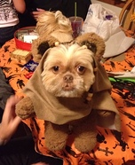 DIY Ewok Dog Costume