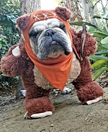 Ewok Bully Costume
