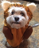 Ewok Dog Homemade Costume