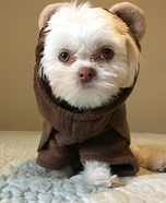 Ewok Puppy Homemade Costume