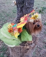 Fall Fairy Dog Costume