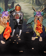 Fire Breathing Dragons Dogs Homemade Costume