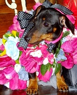 Bouquet of Flowers Costume Idea for Pets