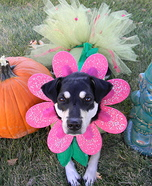 Flower Puppy Homemade Costume