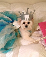 Fluffiest Tooth Fairy Dog Costume