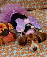 Flutter Bug Fairy Dog Homemade Costume