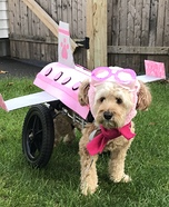 Flying Dog Homemade Costume