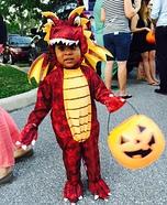 Flying Dragon Baby Costume