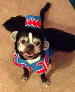 Creative costume ideas for dogs: Flying Monkey Costume