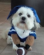 Football Fan Costume