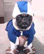 Football Maniac Costume Idea for Dogs