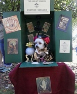 Creative costume ideas for dogs: DIY Fortune Teller Dog Costume