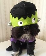 FrankenDog Costume