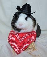 Frankie the Guinea Pig Homemade Costume