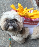 French Fries to Go Dog Homemade Costume