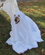 Friendly Ghost Costume